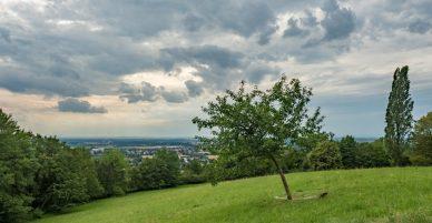 cropped-heiligenberg-028-hdr-1.jpg
