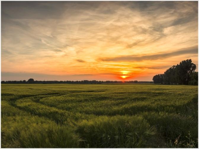 Sonnenuntergang-3web