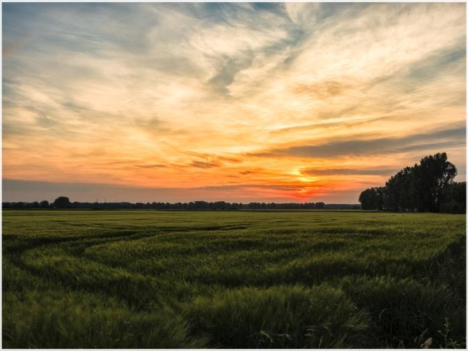 Sonnenuntergang-4web
