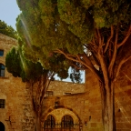 Rhodos Stadt – Antike und Mittelalter